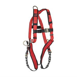 Dynamic security harness